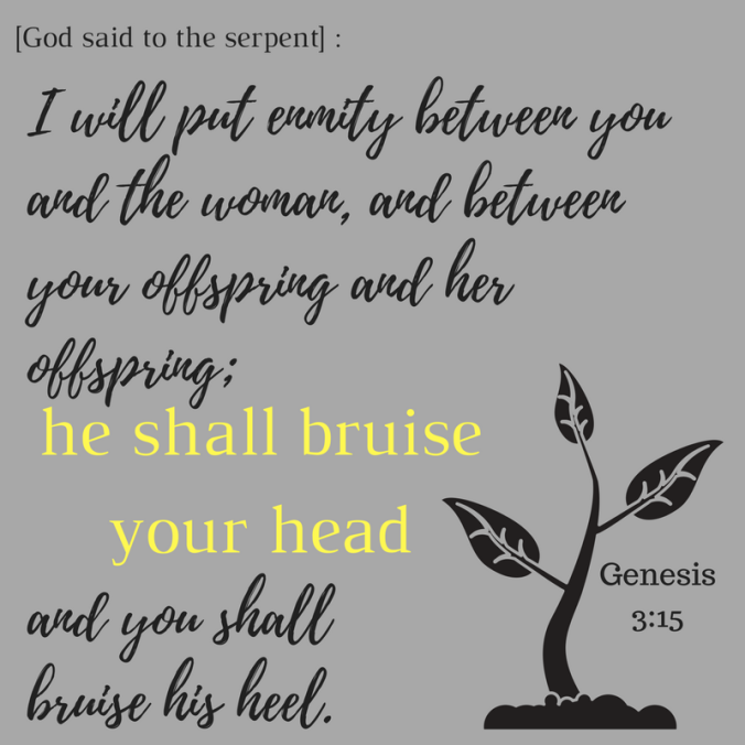 I will put enmity between you and the woman, and between your offspring and her offspring; and you shall bruise his heel.