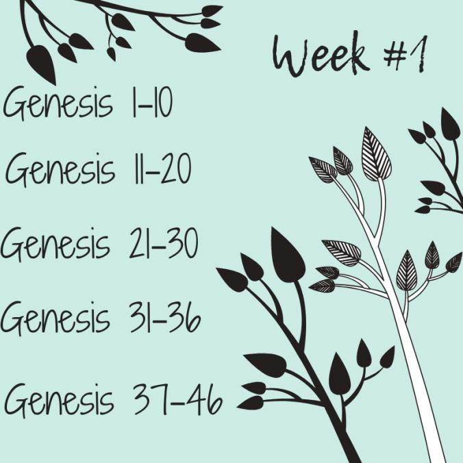 Week #1.png