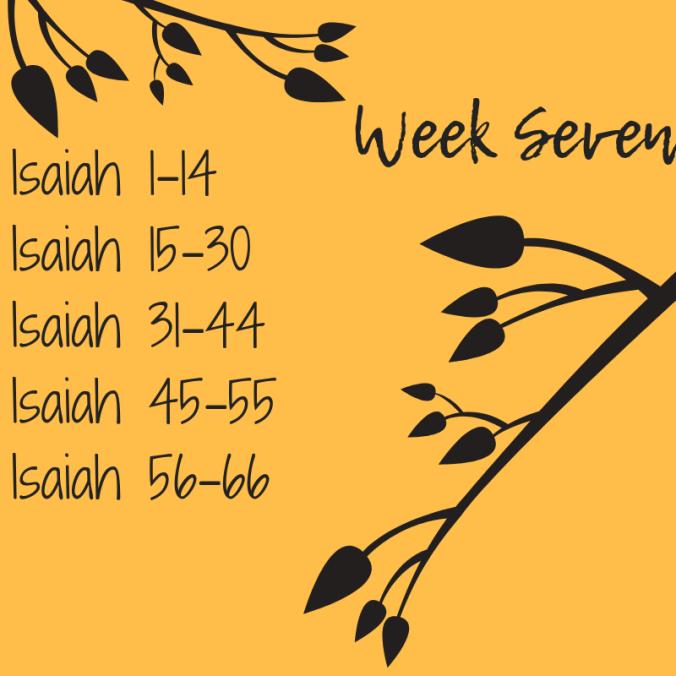 Week Seven.png
